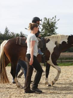Horse Kids_L 1_bea_kl